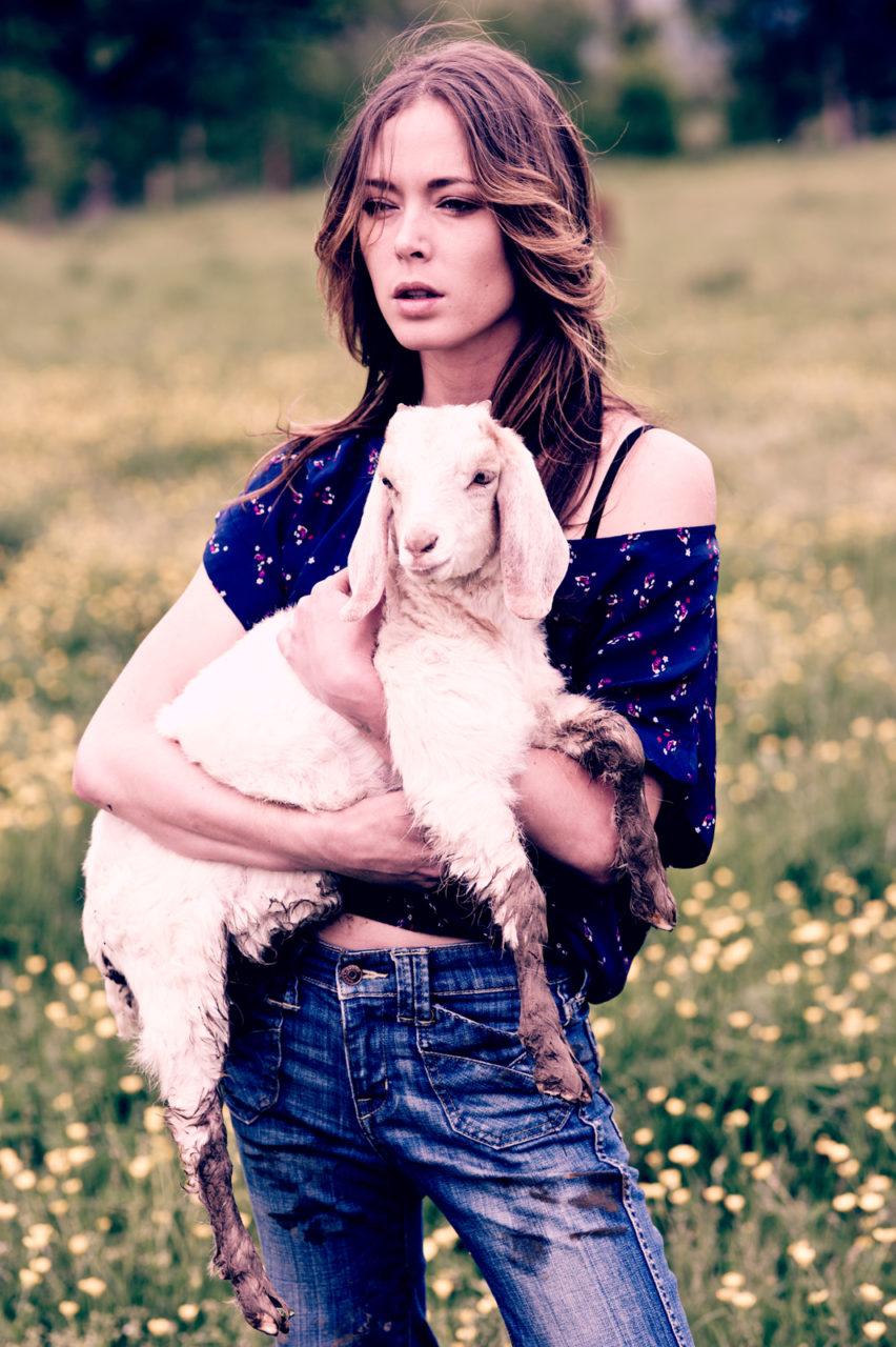 Goat3web